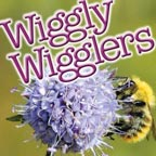 Wiggly Wigglers Podcast Album Art